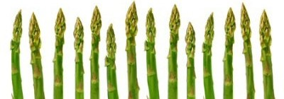 A row of asparagus spears (referring to the historic 'Asparagus Lunches' of non-conformist ministers).