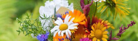 Flower Communion - 13/06/21